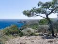 Buchten am Cap de Creus