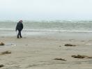 Bernsteinsucher am Strand von Fanø