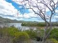Floreana: Punta Cormorant