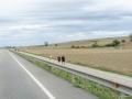 Jakobsweg von Logroño nach Burgos
