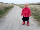 Spazierweg in den Dünen
