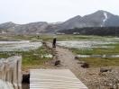 Blick auf den Zeltplatz in der Landmannalaugar. Wir brechen auf zu einer kleinen Tageswanderung in die Umgebung.