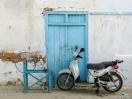 Roller vor blauer Holztür