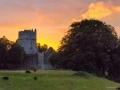 Muckross Abbey in der Abendsonne