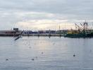 Norddeich Hafen