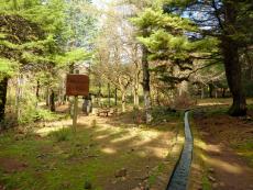 Picknickplatz an den Fontes Ruivas