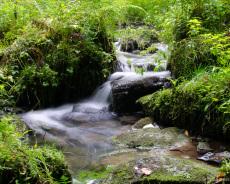 Silberbachtal Wasserfall