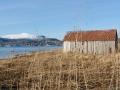 Altes Bootshaus auf den Vesterålen