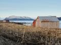 Holzhütten auf den Vesterålen