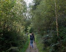 Wanderung durch den Teutoburger Wald