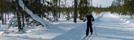 Skilanglauf-Versuch