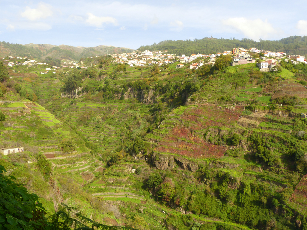 Levada do Norte auf Madeira