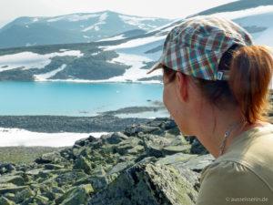 Ausblick auf den Gletschersee Istjørni