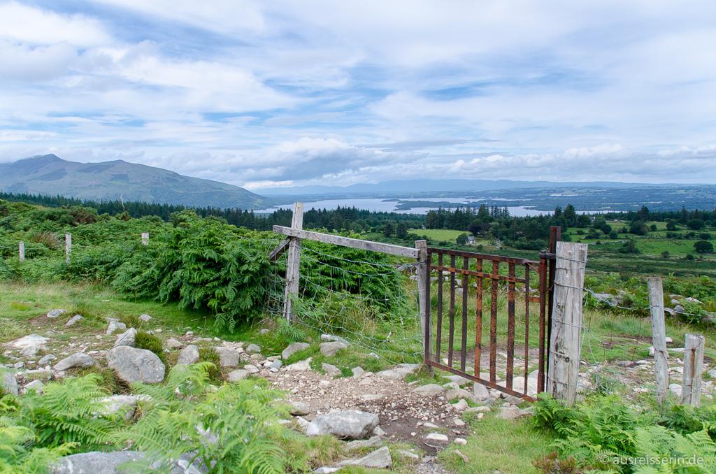 Ausblick auf den Killarney Nationalpark
