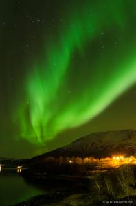 Nordlichter über dem Olotfjord bei Bogen