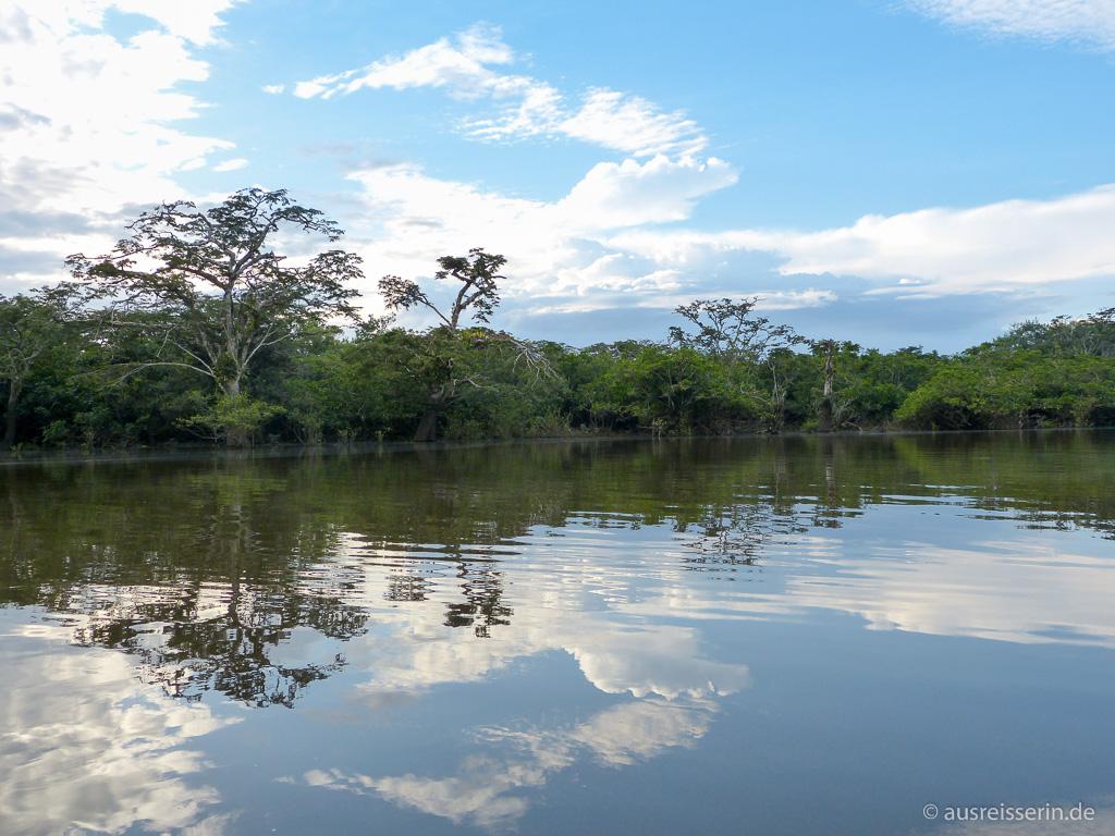 Cuyabeno-Naturreservat