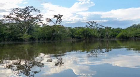 Laguna Grande im Cuyabeno Naturreservat