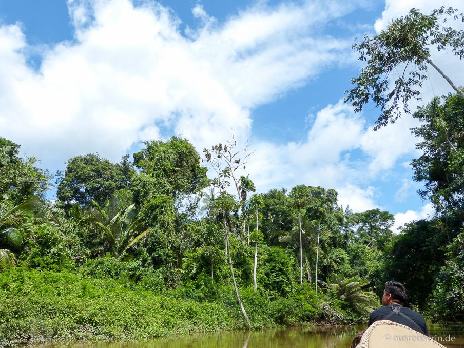 Kanufahrt über den Cuyabeno Fluss