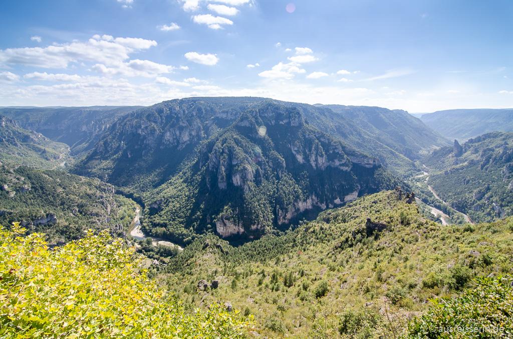 Blick vom Point Sublime auf eine Schleife des Tarn.