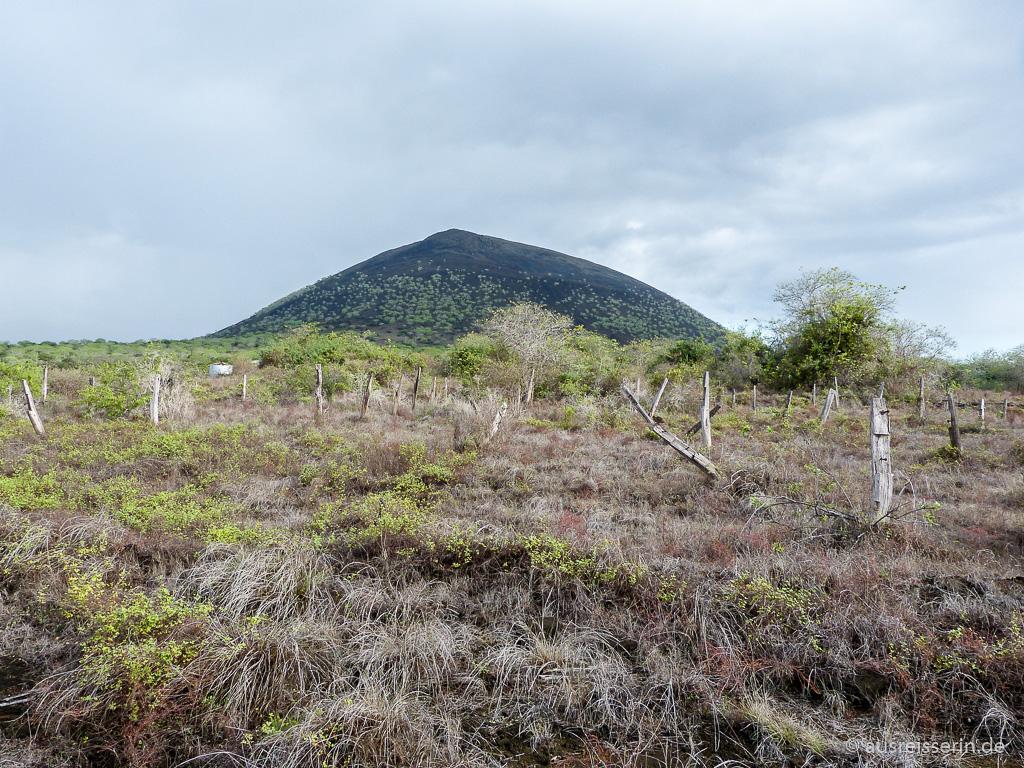 Schwarzer Vulkankegel auf Santiago
