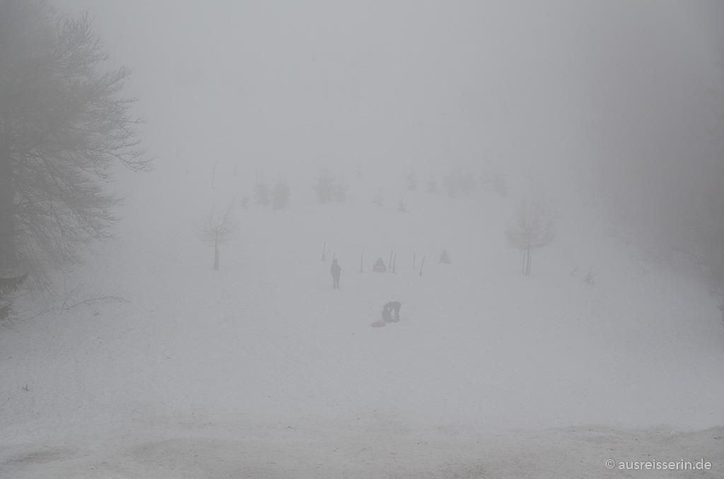 Suchbild: Rodelhang im Skigebiet La Bresse