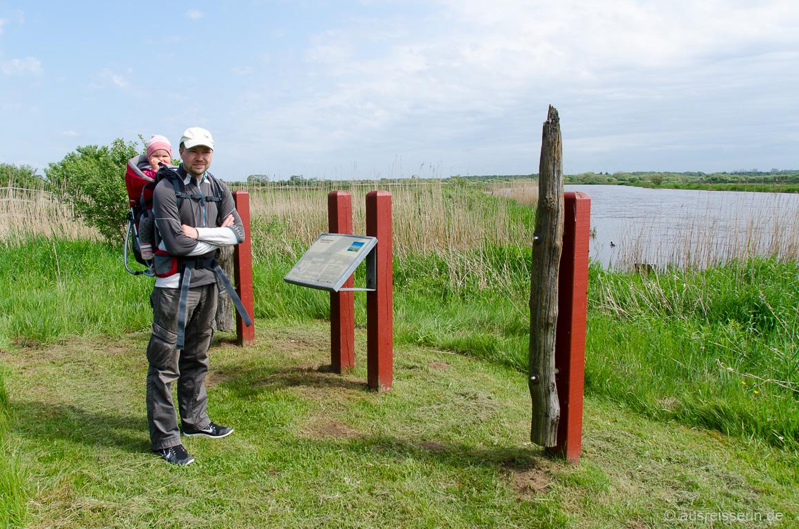 Spaziergang im Natur- und Vogelschutzgebiet Skjern Å