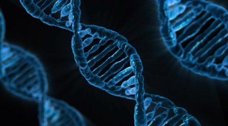 Down-Syndrom: Ein Chromosom mehr im (Reise-)Gepäck
