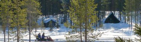 Per Schneemobil durchs Fjell: Wintertraum in Lappland