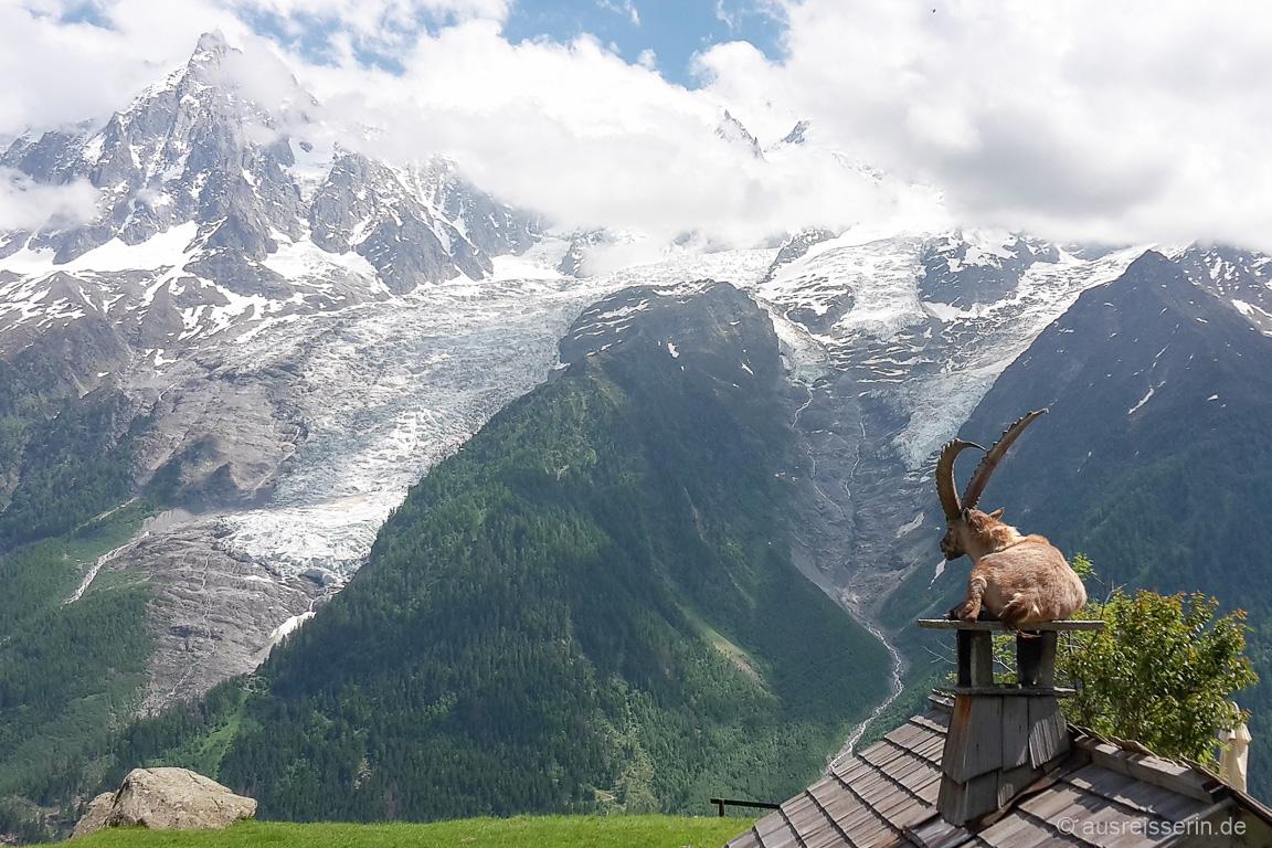 Aussicht auf das Mont Blanc Massiv