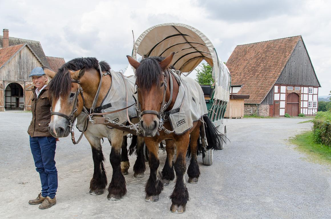 Pferdekutsche im Freilichtmuseum Detmold