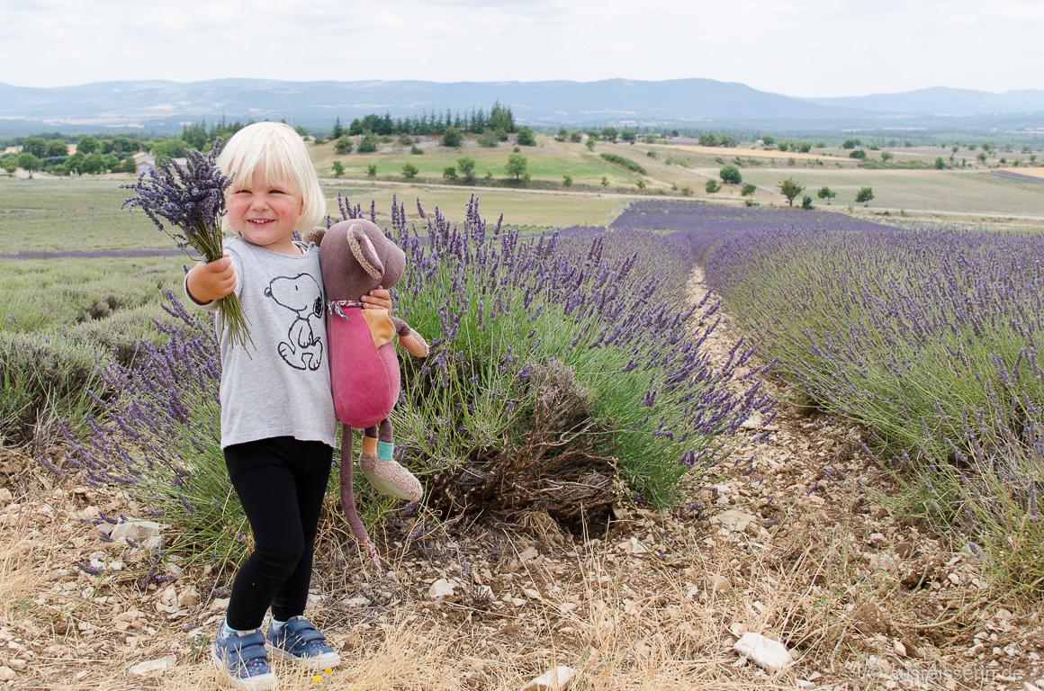 Lavendel-Strauß