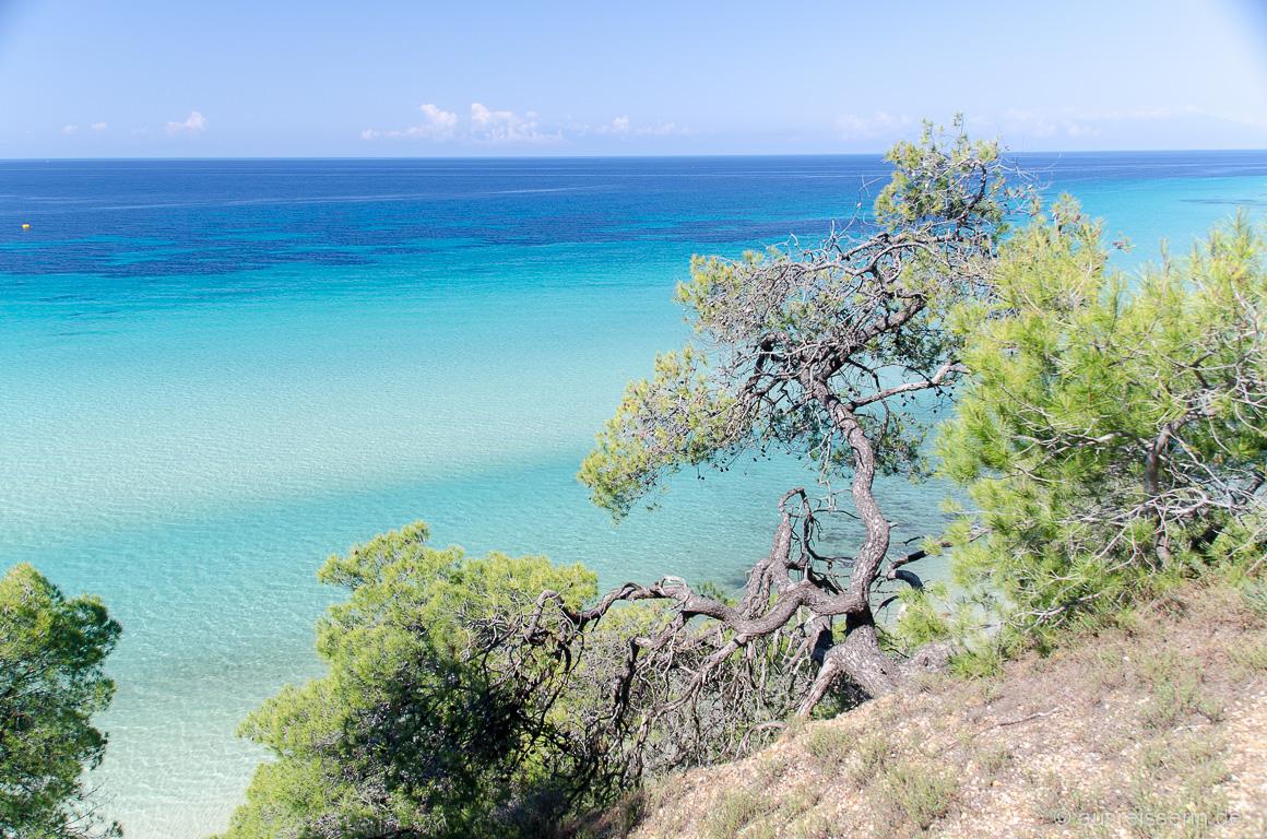 Ausblick auf die Küste der Kassandra
