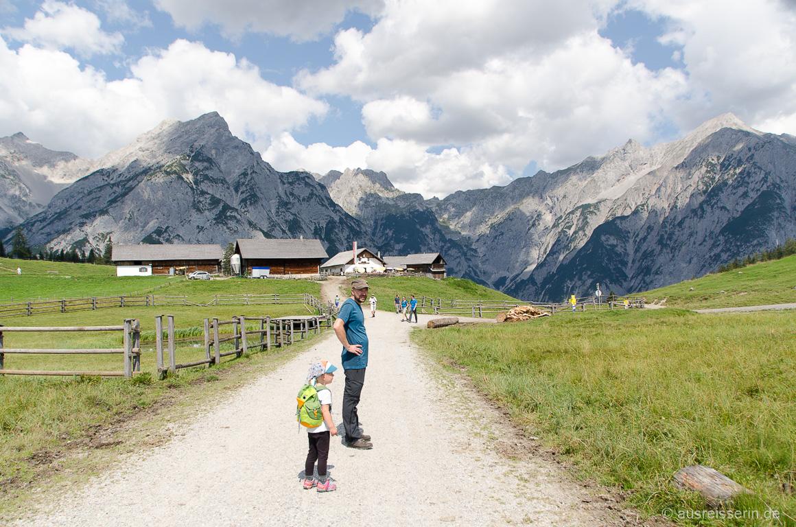 Walderalm im Karwendel