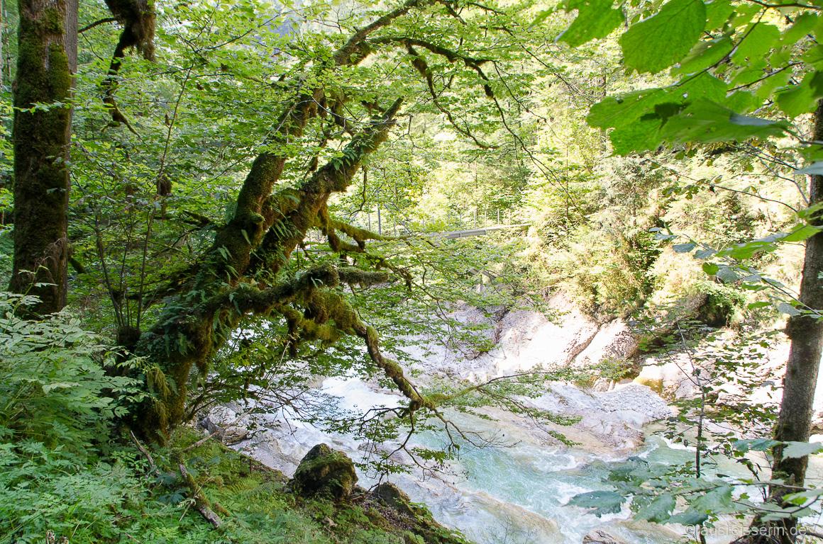 Szene aus der Tiefenbachklamm in Tirol