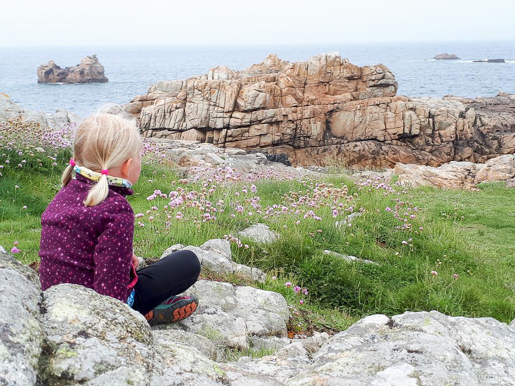 Grasnelken an Granitküste