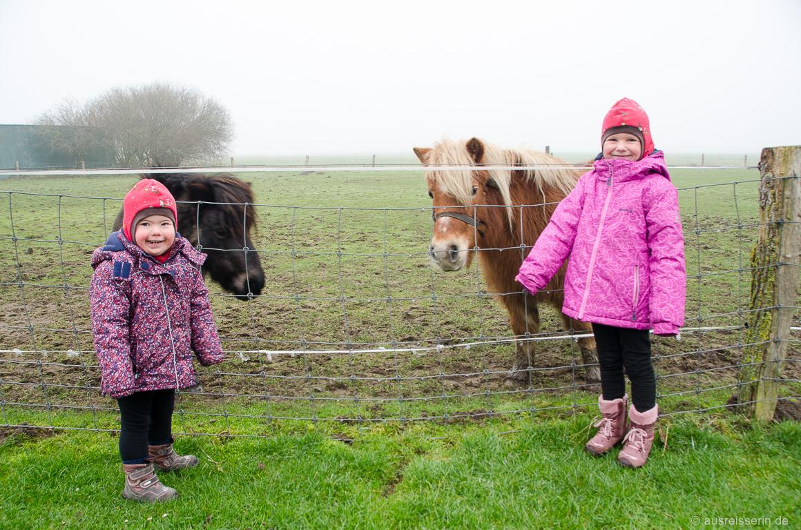 Lotta und Leni bei den Ponys