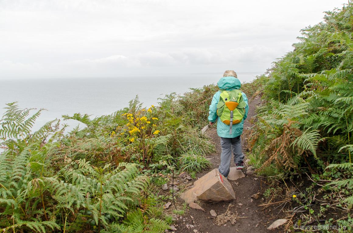 Wandern durch Farn auf der Crozon-Halbinsel
