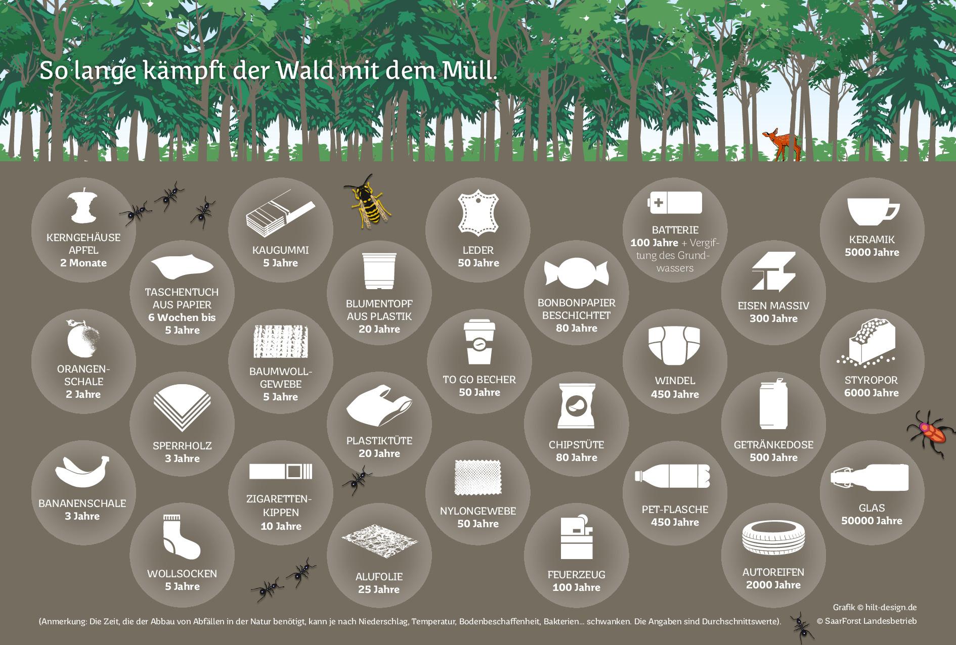 So lange kämpft der Wald mit dem Müll
